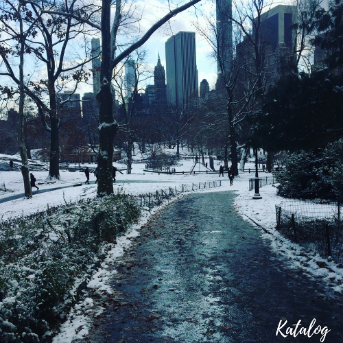 Central Park in the Snow
